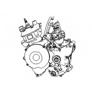 STELS TRIGGER 50 X(SM) (двигатель)